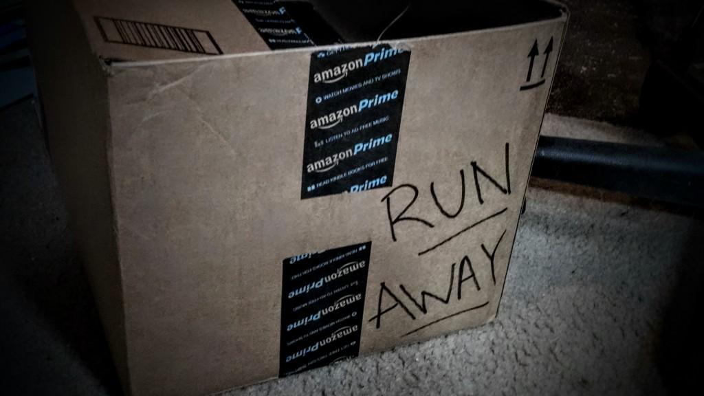Amazon_Run